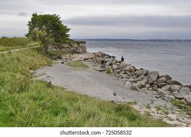 Rocky Coast in Helsingor, Denmark