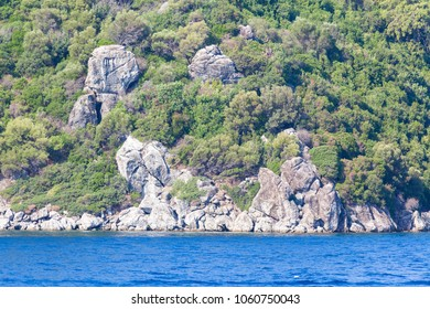 Rocky coast overgrown with bushes on the Mediterranean Sea near Marmaris