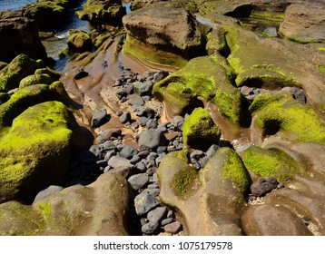 Rocky coast of peculiar shapes at low tide, The confital, Gran canaria