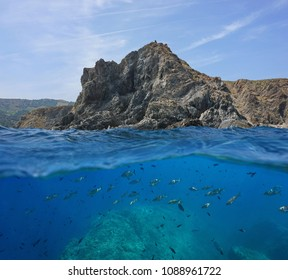 Rocky coast with a shoal of fish underwater, split view above and below water surface, Mediterranean sea, Marine reserve of Cerbere Banyuls, Pyrenees Orientales, France