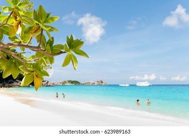 Rocky coast and white sand beach on Similan island
