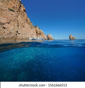 Rocky coastal cliff with a school of fish underwater, Spain, Mediterranean sea, Costa Brava, split view over and under water surface, Aigua Xelida, Palafrugell, Catalonia