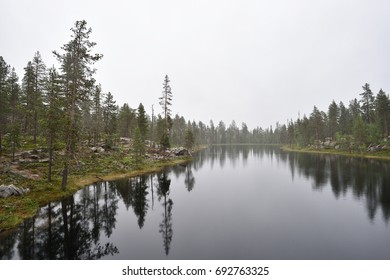 Rocky forest with river, Pallas-Yllastunturi, Ruoppakongas