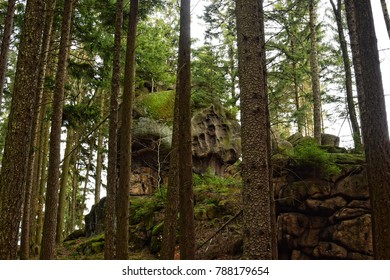 Rocky formation in the mountains forest between trees stone natural creation beautiful wild scenery hiking through trail in woods