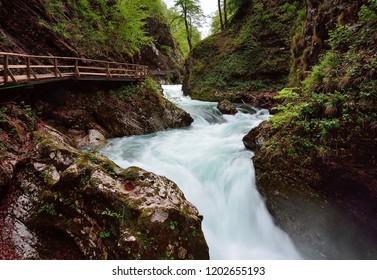Rocky Gorge Vintgar in Slovenia