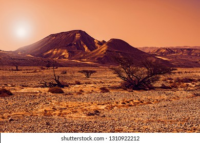 Rocky hills of the Negev Desert in Israel at sunset. Breathtaking landscape of the rock formations in the Southern Israel. Dusty mountains interrupted by wadis  and deep craters.