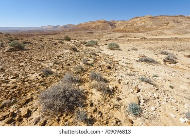 Rocky hills of the Negev Desert in Israel. Wind carved rock formations in the Southern Israel Desert.