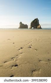 Rocky Islands at Wharariki Beach in New Zealand