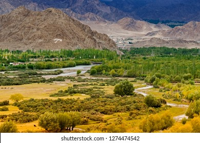 Rocky landscape of Kargil with himalayan mountains in background , green valley , Ladakh, Jammu and Kashmir, India
