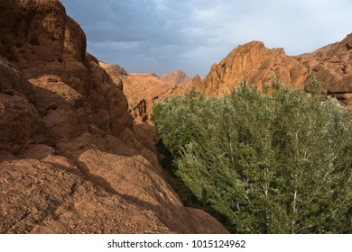 Rocky landscape at the top of Dadas Gorge in Morocco, Africa