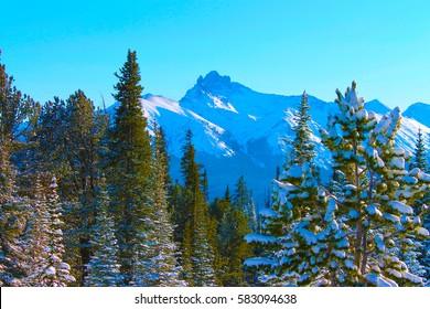 Rocky Mountain Blue