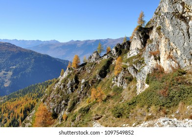 rocky mountain and forest in autumn under blue sky