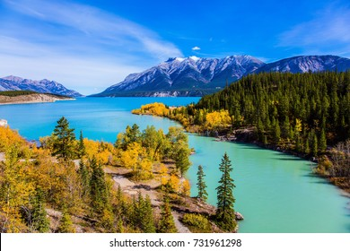 Rocky Mountains of Canada in the Indian summer. Sunny cloudless day in October. Stunning turquoise Abraham Lake. The concept of ecological and active tourism