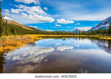 Rocky Mountains on a sunny autumn day. Shallow lakes surrounded by pine forest. The concept of active tourism and ecotourism