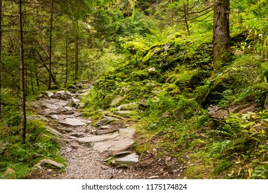 A rocky path in the Raggaschlucht in Carinthia (Austria)