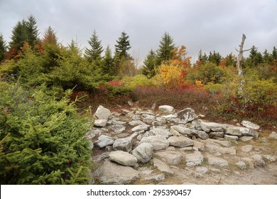rocky plateau of the hills of Dolly Sods West Virginia mountains