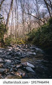 rocky river bed in the spring at the great smoky mountains natio