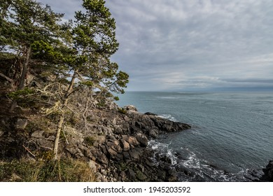 rocky rugged coast of the Salish Sea from coast trail at East Sooke Regional Park on Vancouver Island, British Columbia, Canada