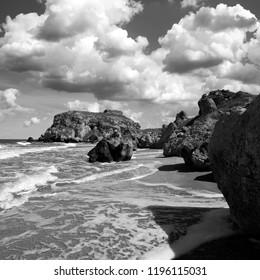 Rocky seashore. Black and white art photo.