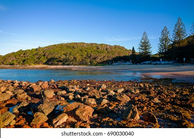 Rocky seashore with forested hill, trees and car park at Port Macquarie Australia. Big jagged rocks on Shelly Beach at sunset.