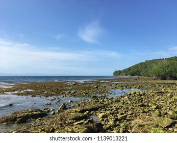 The rocky seaside of Cebu island during low tide. The photo was taken on a clear bright sunny afternoon.