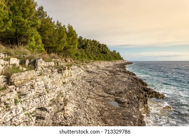 Rocky shore line with pine trees forest by Adriatic sea in Kamenjak, Croatia