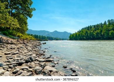 Rocky shore of a mountain river Katun. Altai Mountains, Russia.