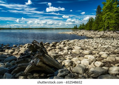 Rocky Shoreline with a weathered tree stump at Morris Island Conservation Area, Ontario, Canada
