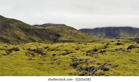 Rocky terrain of Iceland.