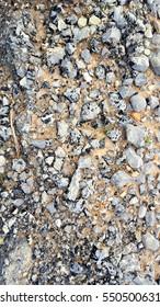 Rocky textured floor background