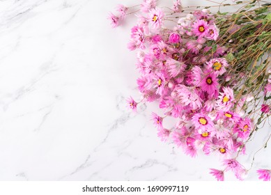 Rodanthe flowers placed on marble