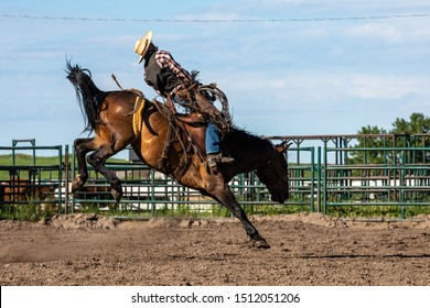 Rodeo and Bronco Riding at Pincher Creek Canada