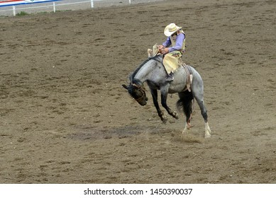 rodeo riders in action trying to stay in saddle