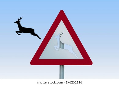 roe deer jumps out of his sign ...