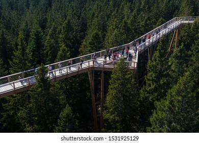Rogla, Slovenia - Oct 13 2019: People walk across a tree canopy walk, treetop walkway, footbridge through the forest on Rogla, Pohorje mountain, Slovenia