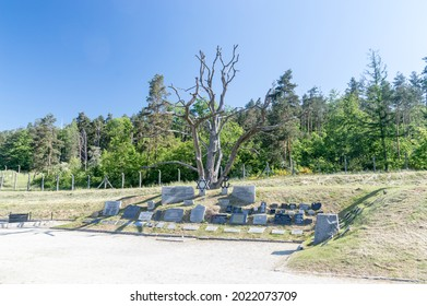 Rogoznica, Poland - June 3, 2021: Memorial plaques at KL Gross-Rosen. Gross-Rosen was a network of Nazi concentration camps built and operated by Nazi Germany during World War II.