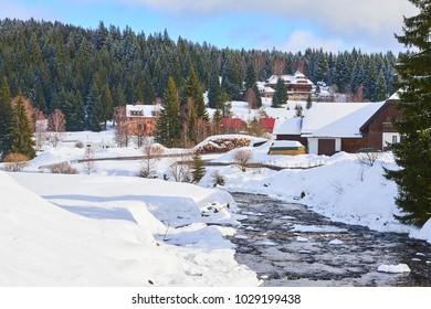 Roklansky creek. National Park Sumava near Modrava village in winter (Czech Republic)