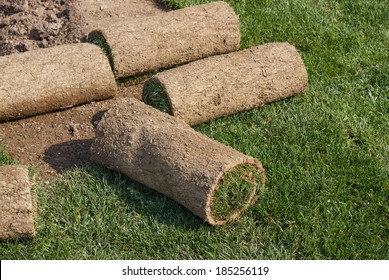 Roll grass on the ready lawn