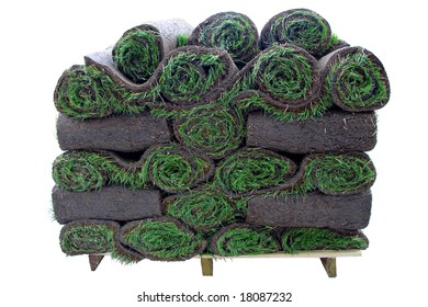 Roll of sod -instant grass