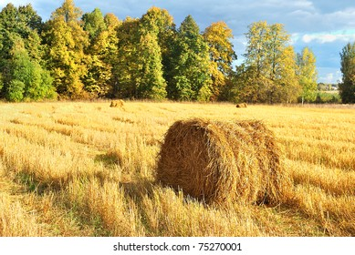 A roll of straw. Autumn landscape. Harvesting