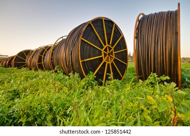rolled drip irrigation pipes  in the field