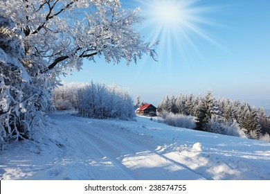 Rolled ski track shines on a sunny December day. Christmas in the forest. Winter mountain sports resort