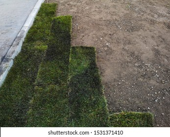 Rolled sod for new lawn. City work on gardening. Lawn grass in rolls. Laying lawn grass at the place of growth. Arrangement of the park zone, horizontal image