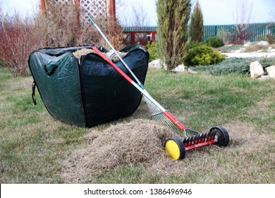 Roller moss removal rake and a lawn rake at a foldable garden leaf bag full of dethatched lawn grass in the spring garden