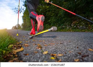 Roller skates on asphalt road. Preparation for cross-country skiing.