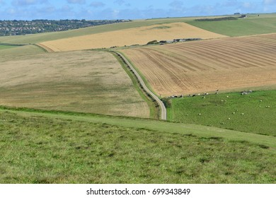 Rolling farmland in East Sussex.