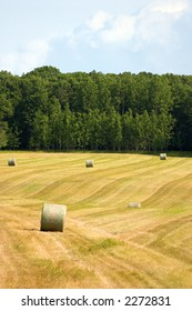 a rolling field with large round bales of hay