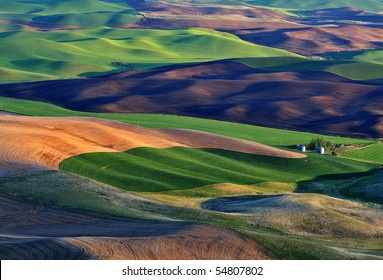Rolling Fileds in Palouse, WA