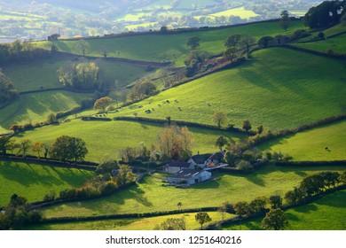 Rolling hills in East Devon