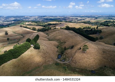 rolling hills and fields, Victoria